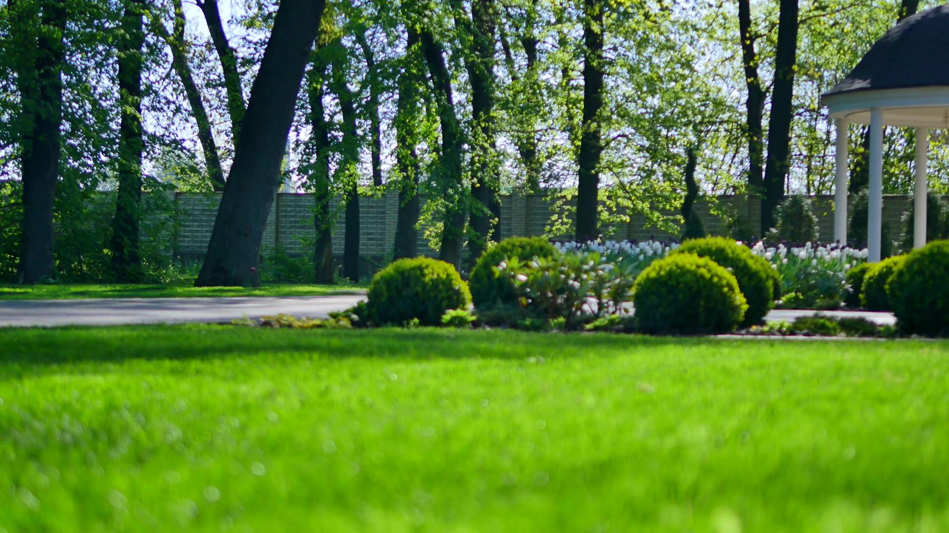 Photo of Meilleurs engrais pour pelouse 2020 Guide d'achat, comparatif et avis